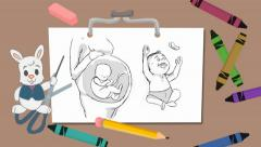 Pregnancy - drawing board - rabbit 01 Stock Footage
