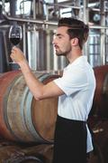 Winemaker examining glass of red wine at the winefarm - stock photo