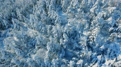 Aerial Snow Covered Landscape Drone Footage Trees Winter Nature Beautiful Europe Stock Footage