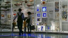 Mom Dad Son Child Kid Visit Natural History Museum Tokyo Stock Footage