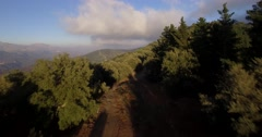 4K Aerial, Flight over a forest, off the beaten track, Andalusia, Spain Stock Footage
