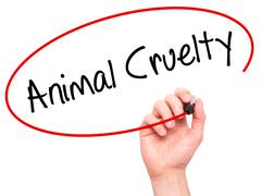 Man Hand writing Animal Cruelty with black marker on visual screen Stock Photos