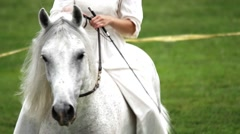 Young woman cares for and rides her beautiful white horse Stock Footage