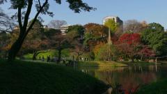 Koishikawa Korakuen Gardens Park Fall Autumn Trees Foliage Tokyo Japan Stock Footage