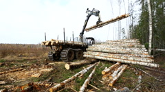 Forest work. View on logger unloads timber Stock Footage