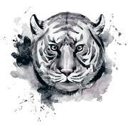 Watercolor raster tiger - stock illustration