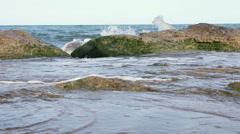 Stock Video Footage of Algae  rocks in the sea.