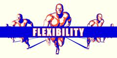 Flexibility - stock illustration