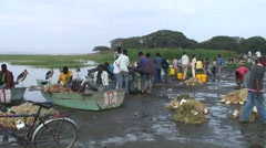 Fishermen sitting in boat sorting catch at Lake Awassa Stock Footage