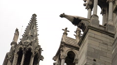 Gargoyles watch over Paris, France from Notre Dame cathedral. Stock Footage