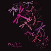 Dragonfly design on black background - Vector Illustration, Background - stock illustration