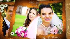 Our Precious Wedding Moments Stock After Effects
