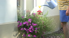 Hand watering blossom flower in pot hanging on windowsill. 4K Stock Footage