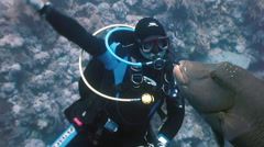 Diver playing with Napoleon Fish on Coral Reef. Stock Footage