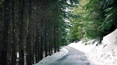 Road Through The Woods With Snow Falling Stock Footage
