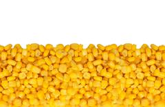 yellow corn grain isolated on white background - stock photo