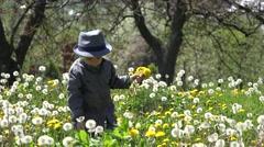 Sweet little boy with modern hat blowing a dandelion, blossom field Stock Footage