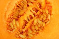 Detail of cantaloupe melon - cross section Stock Photos