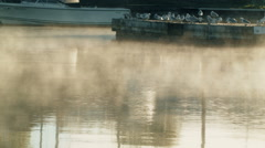 Fog Moving over Water texture and Seagulls in background Stock Footage