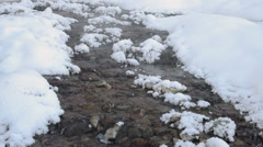 Small rapid stream, with clear water and pebbles on the bottom Stock Footage