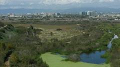 Ballona Wetlands in Playa Del Rey with Marina Del Rey Stock Footage