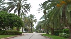 Palm Island Hibiscus Island  - stock footage