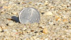 One dirham coin stick out sand, washed down by wave surf over. Extreme close up Stock Footage