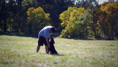 Dog trainer and young german shepherd friendship in the field Stock Footage
