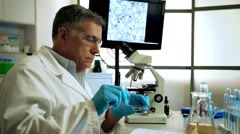 Virologist studying mosquito larvae for zika under a microscope Stock Footage