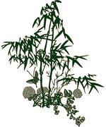 Leaf design nature vector flower - stock illustration