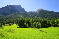 Switzerland Alps - Park Ela, canton Graubunden. Stock Photos
