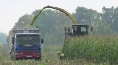 Farmer drive harvester machine cut maize and load into truck trailer. 4K Stock Footage