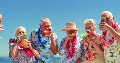 Senior friends drinking cocktails Stock Footage