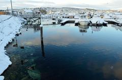 Alot of ducks swimming amongst snow covered boats in marina Stock Photos