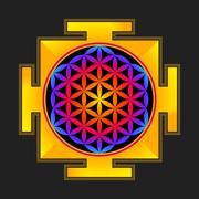 colored flower of life yantra illustration. - stock illustration