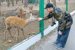Orel, Russia - October 18, 2015: Photographer with a Nikon camera feeds deer Stock Photos