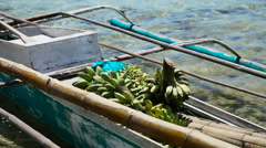 Bananas in the boat Stock Footage