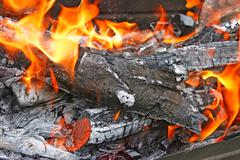 Burning firewood with flames Stock Photos