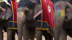 Three painted elephants Stock Footage