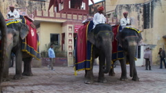 Three guys sitting on elephants in a town. Stock Footage