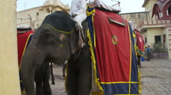 A man on an elephant in a town. Stock Footage