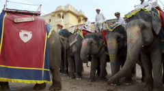 Many men on painted elephants in a town square. Stock Footage