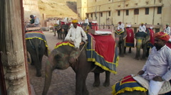 Several men riding elephants in the town central area. Stock Footage