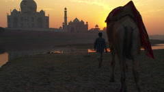 Taj mahal sunset and camel Stock Footage
