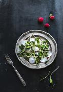 Spring salad with sunflower sprouts and radish in vintage metal plate over ru Stock Photos