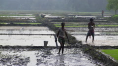 Two men preparing rice fields in India Stock Footage