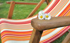 Daisies placed on the armrest of a deckchair in the garden Stock Photos
