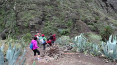 Group of hikers walks on the hiking route through the Masca gorge, Tenerife Stock Footage