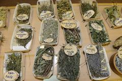 Collection of dried herbs and medicinal plants education Germany Europe Stock Photos