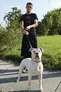Young man holding his attack dog on a leash - stock photo